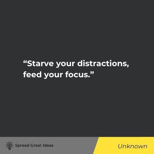 Focus Quotes (3)