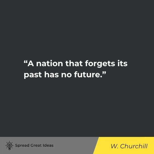 History Quotes (17)