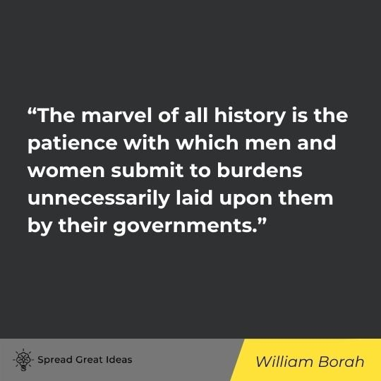 History Quotes (2)