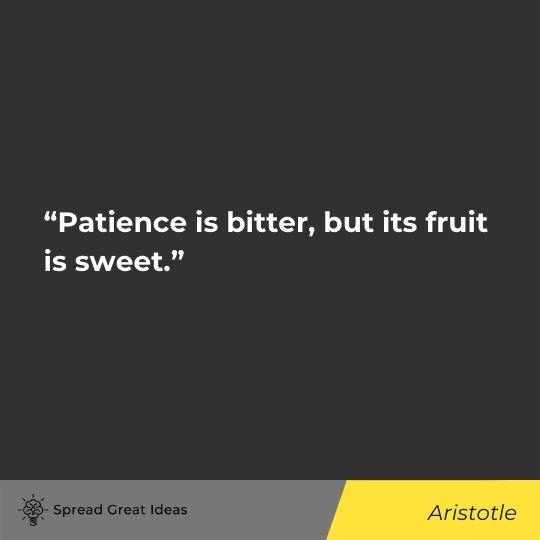 Patience Quotes (13)