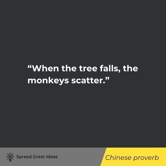 Power & Strategy Quotes (17)